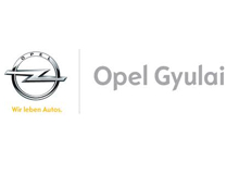 client__0019_opelgyulai